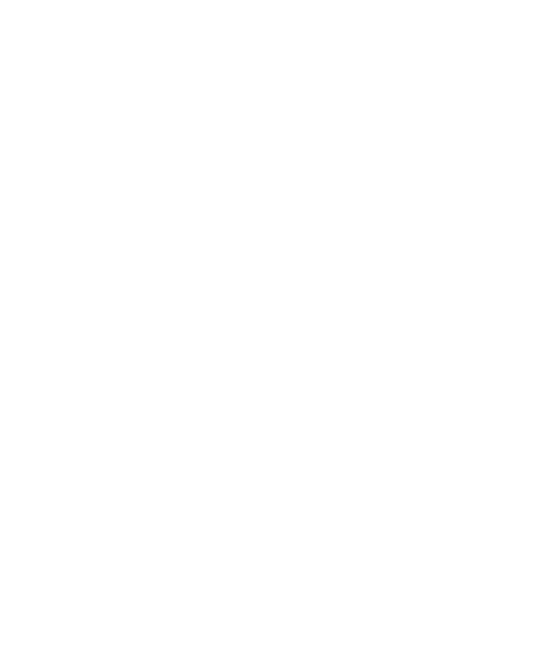 NewValve logo